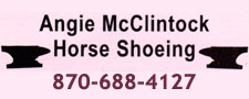 Angie McClintock Horse Shoeing