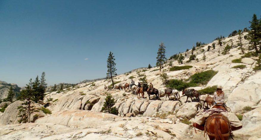Emigrant Wilderness Pack Trip