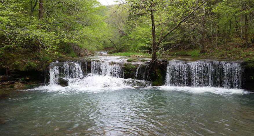 Sneeds Creek